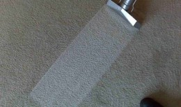 Carpet Cleaning and Scotchgard